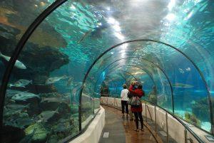 أجمل الجزر الماليزية جمالاً وطبيعة underworld-world-lan